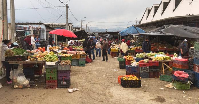 Precio de alimentos agropecuarios incrementa