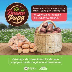 Lee más sobre el artículo La Buena papa llega a los hogares colombianos