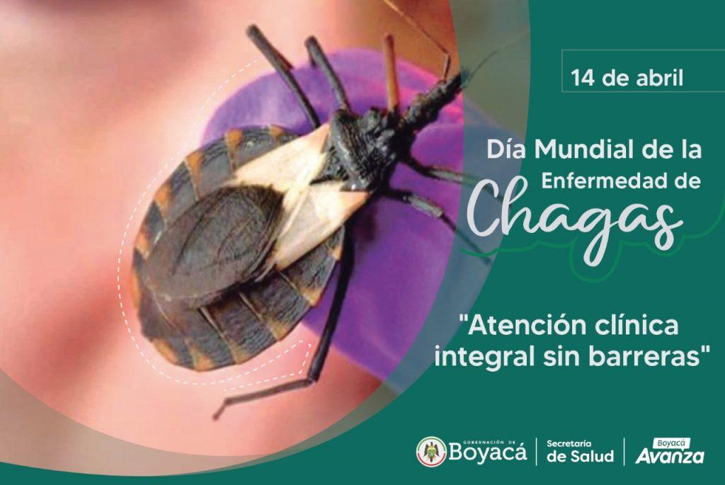 """En este momento estás viendo 14 de abril: Día Mundial de la Enfermedad de Chagas """"Atención clínica integral sin barreras"""""""